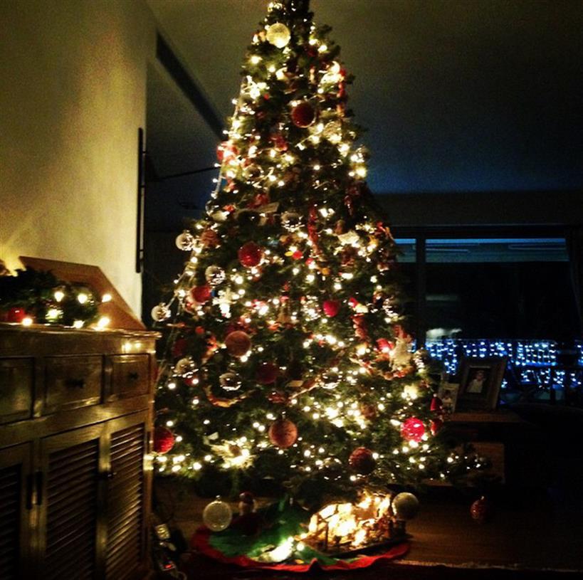 Έλλη Κόκκινου: Δείτε το εντυπωσιακό χριστουγεννιάτικο δέντρο που στόλισε!